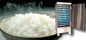 Tủ nấu cơm công nghiệp hiện đại
